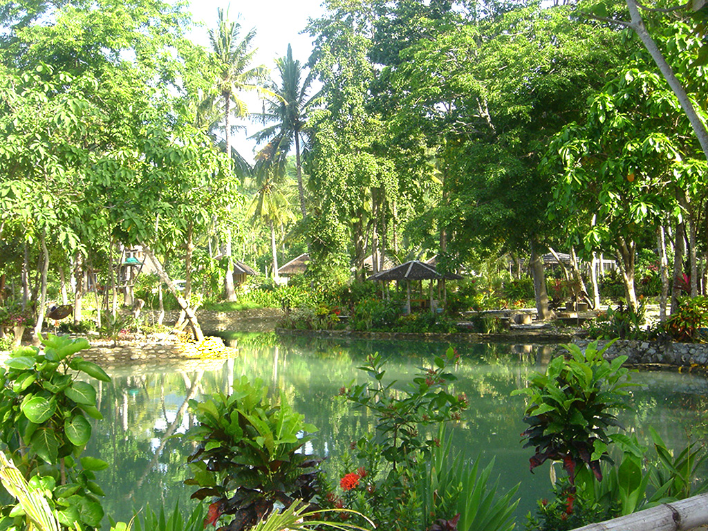 Photo of placid freshwater river-fed seasonal lagoon bordered by lush trees and red flowers Palawan Philippines Puerto Beach Resort