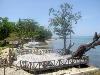 Photo of large sea-side deck, boats resting on boat launch at water's edge, large gnarled tree at Puerto Beach Resort