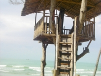Photo of treehouse beside ocean at Puerto Beach Resort