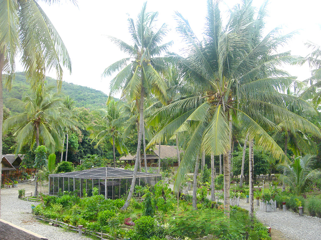 The Puerto Beach Resort Butterfly Garden in landscaped garden grounds